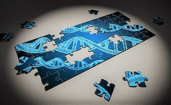 Dna Puzzle Piece 3d Research Genetic Healthcare